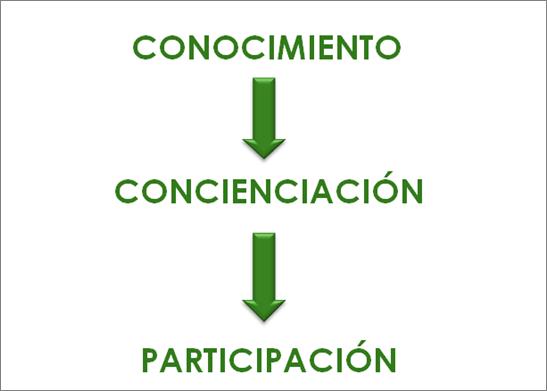 Educar para la participación