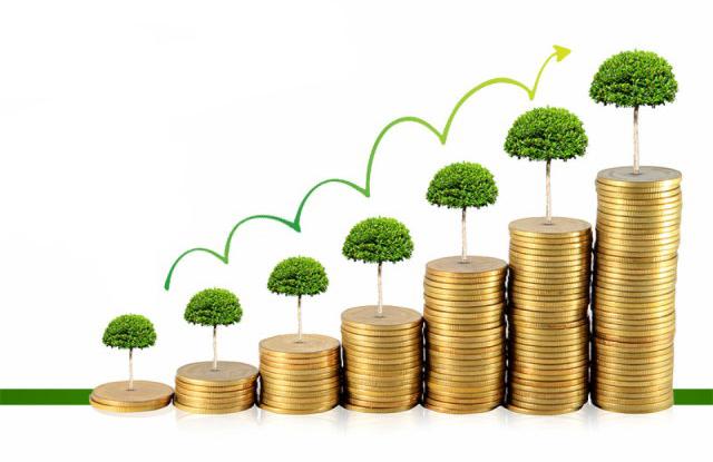 Gestión de proyectos ambientales y elaboración de ofertas para licitaciones