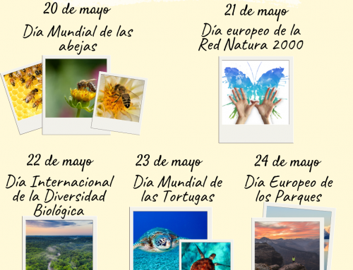 Semana de la Biodiversidad 2020