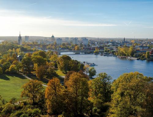 Las Ciudades Verdes o cómo renaturalizar los espacios urbanos