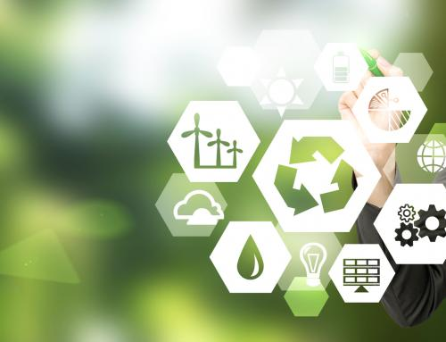 El plan de estudios del Máster Online en Gestión Ambiental en la Empresa como factor diferencial
