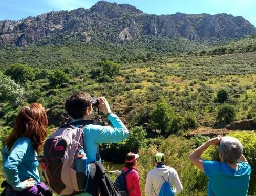 El turismo rural dibuja la estrategia del sector turístico en España