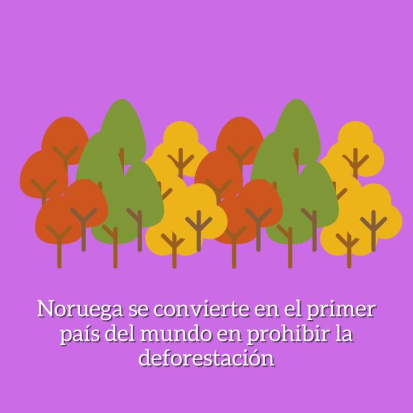 noruega deforestacion