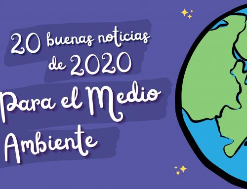 20 buenas noticias de 2020 para el Medio Ambiente
